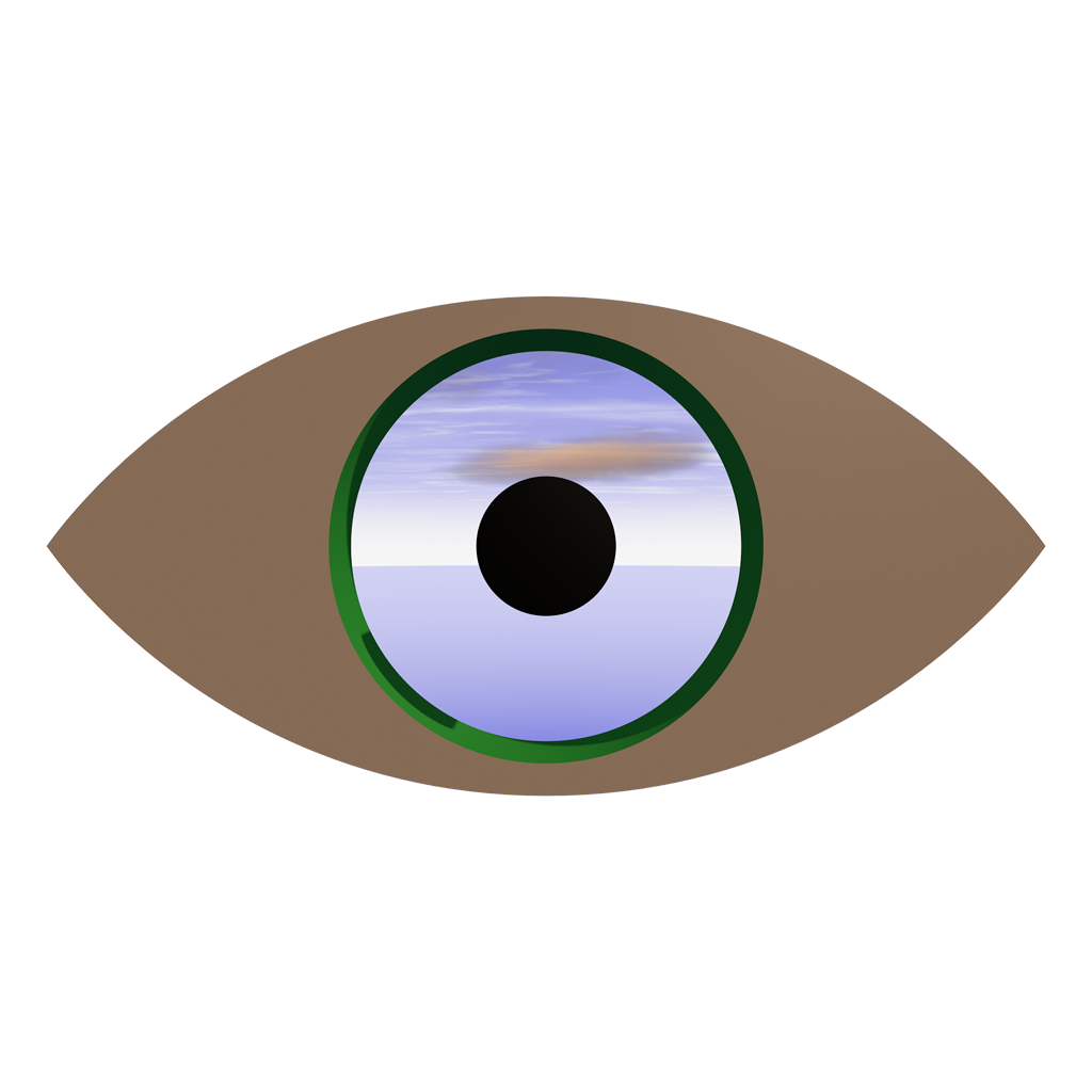 Oculus RiftとLiveViewRiftで全方位パノラマを再生する